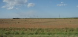 The Hot Flatlands of Texas
